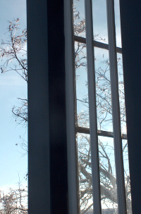 Through the porch windows, ice and sun on the Palouse
