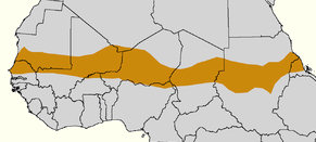 Wikipedia commons image of the Sahel