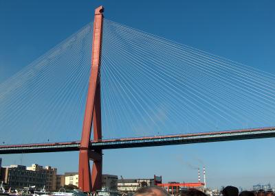 The Yangpu bridge over the Huangpu river in Shanghai